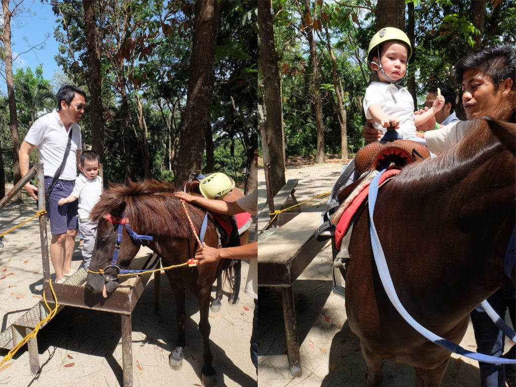 the fun farm at sta. elena horseback riding
