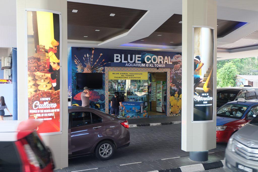 blue coral aquarium kl